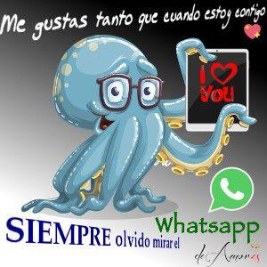 Imagenes de amor para whatsapp - Olvido Mirar el Whatsapp