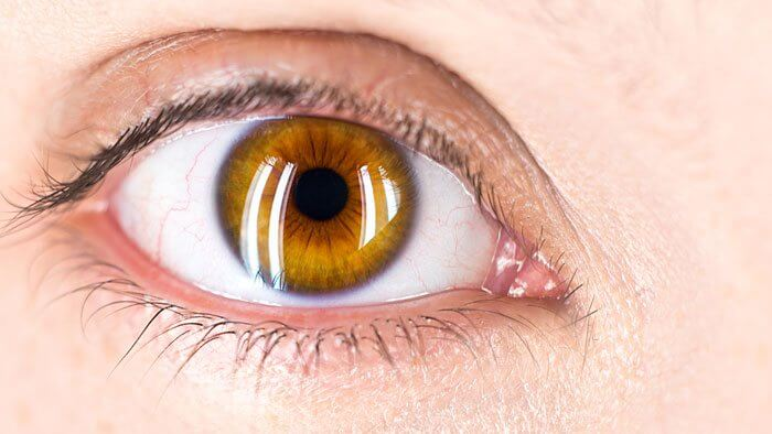 Portada Contorno de ojos efectivo