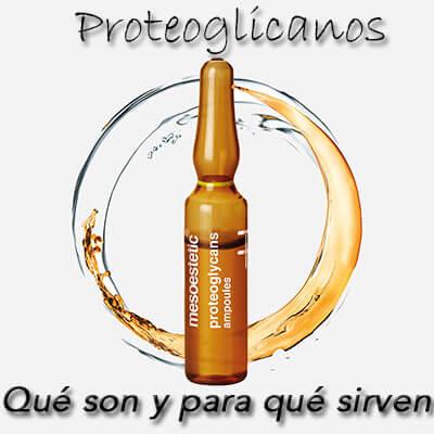 Proteoglicanos Que son y para que sirven