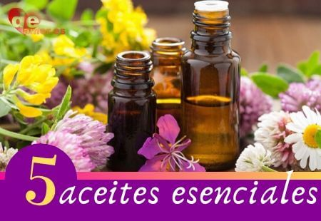 5 aceites esenciales - banner aromaterapia beneficios